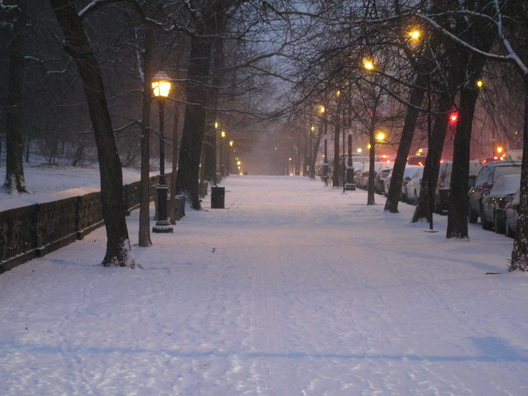 Brooklyn_snow